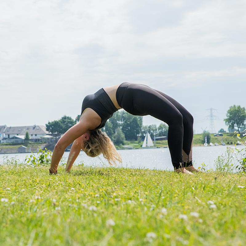 Chakrasana - Wheelpose